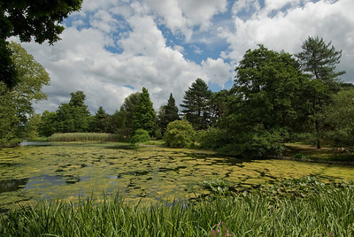 Peaceful scenery at the Royal Botanical Gardens in Kew, England