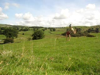 Cartwheel in the Sheep Pasture