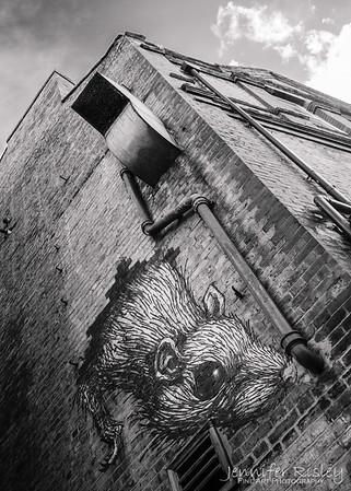 ROA Rat
