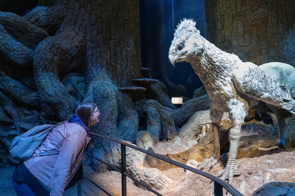 Bowing to Buckbeak in the Forbidden Forest