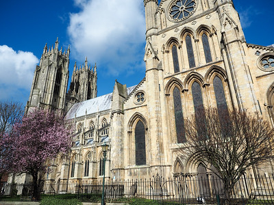 Beverley Minster in spring