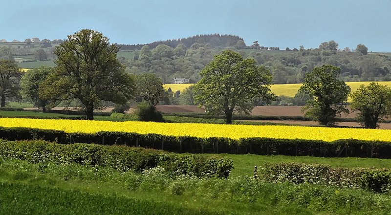 Countryside - Central England