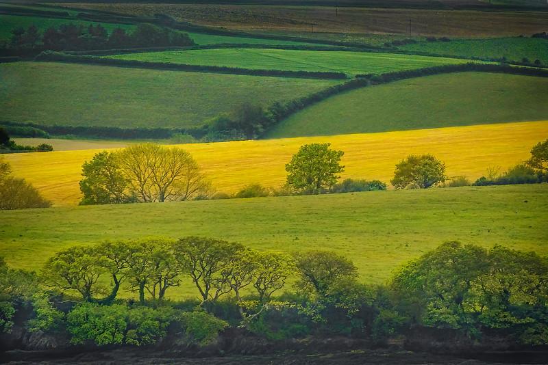 Countryside - SW England