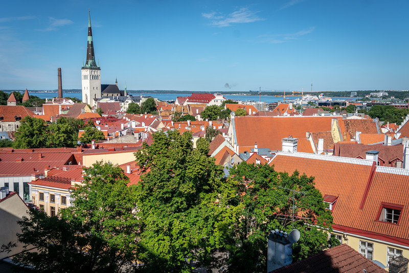 Rooftops of Old Tallinn, Estonia