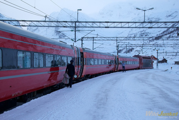 At Myrdal station