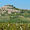 Mario Andretti's hometown of Motovun, surrounded by vineyards.