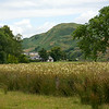 We explored nearby Kilmartin not only for its beauty,