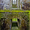 Blarney Castle Photograph 10