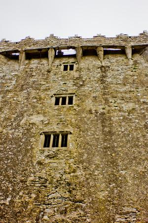 Blarney Castle Photograph 16