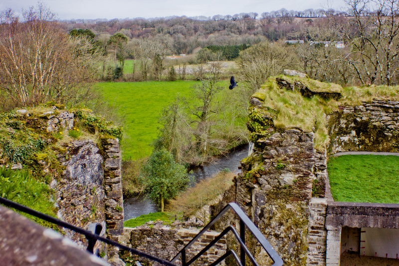 Blarney Castle Photograph 12