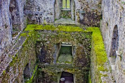 Blarney Castle Photograph 6
