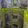 Blarney Castle Photograph 6