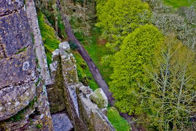 Blarney Castle Photograph 8