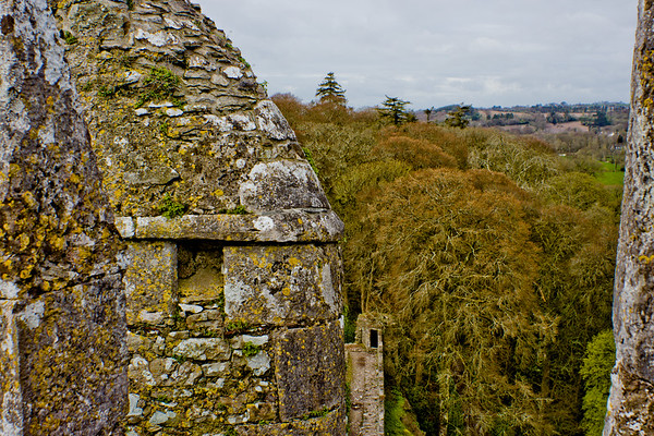 Blarney Castle Photograph 5