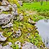 Blarney Castle Photograph 36