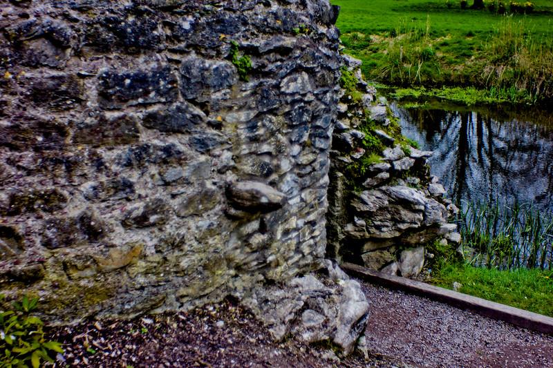 Blarney Castle Photograph 35