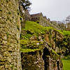 Blarney Castle Photograph 37