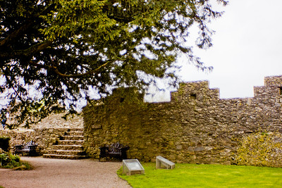 Blarney Castle Photograph 18