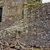 Blarney Castle Photograph 15