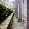 Kilkenny Castle Photograph 1