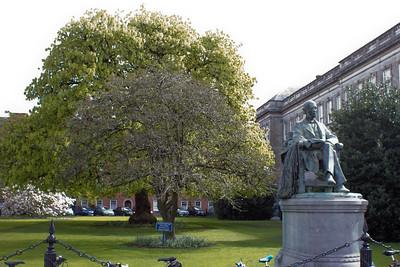 Trinity College Photograph 17