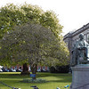 Trinity College Photograph 17