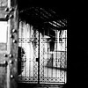 Journey into Fiesole Italy Photograp[h 7