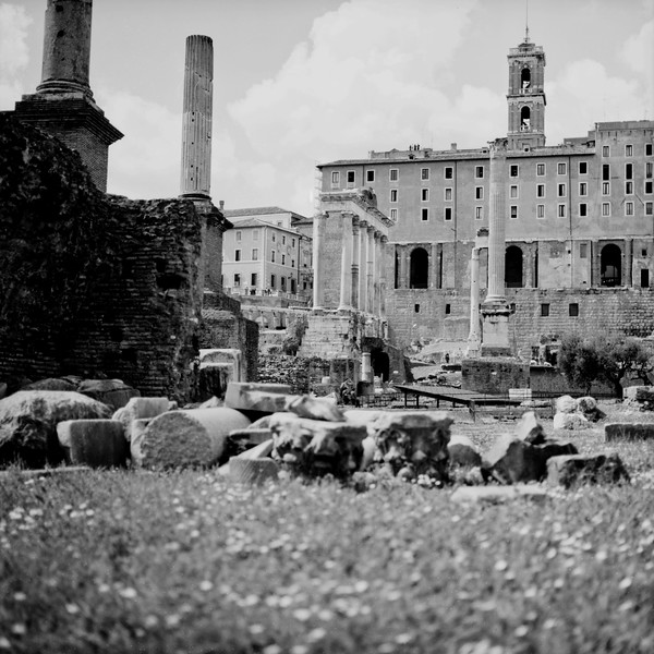 Architecture in the Roman Forum Photograph 4