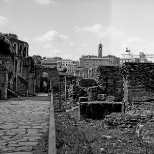 Architecture in the Roman Forum Photograph 9