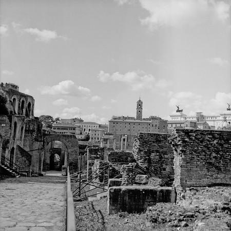 Architecture in the Roman Forum Photograph 3