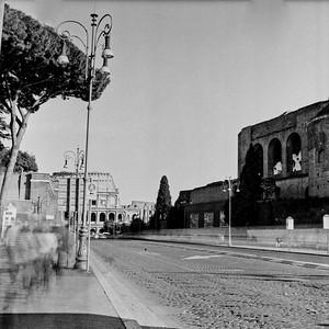 Colosseum in Rome Photograph 10