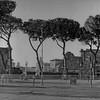 Walk Around Rome Photograph 2