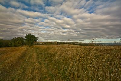 Aude field