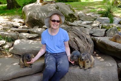 Jennifer and marmots