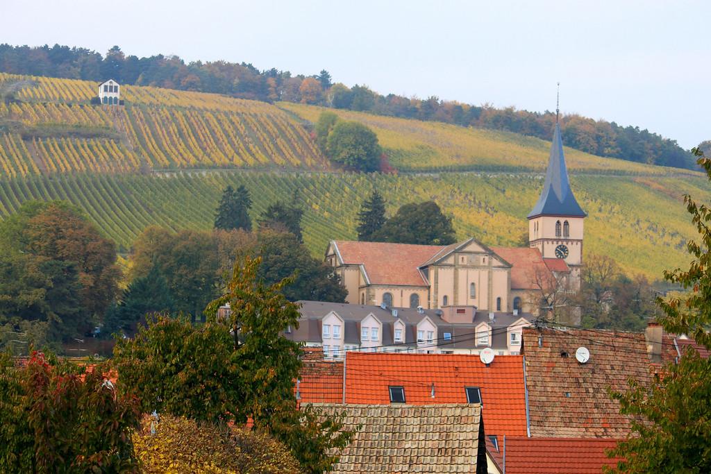 Hillside Vineyards - Alsace, France