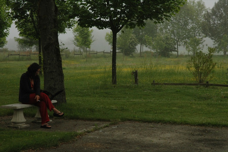 Moody Morning - Bearn, France