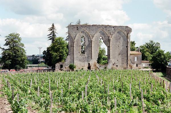 St Emillion - vineyard & ruins