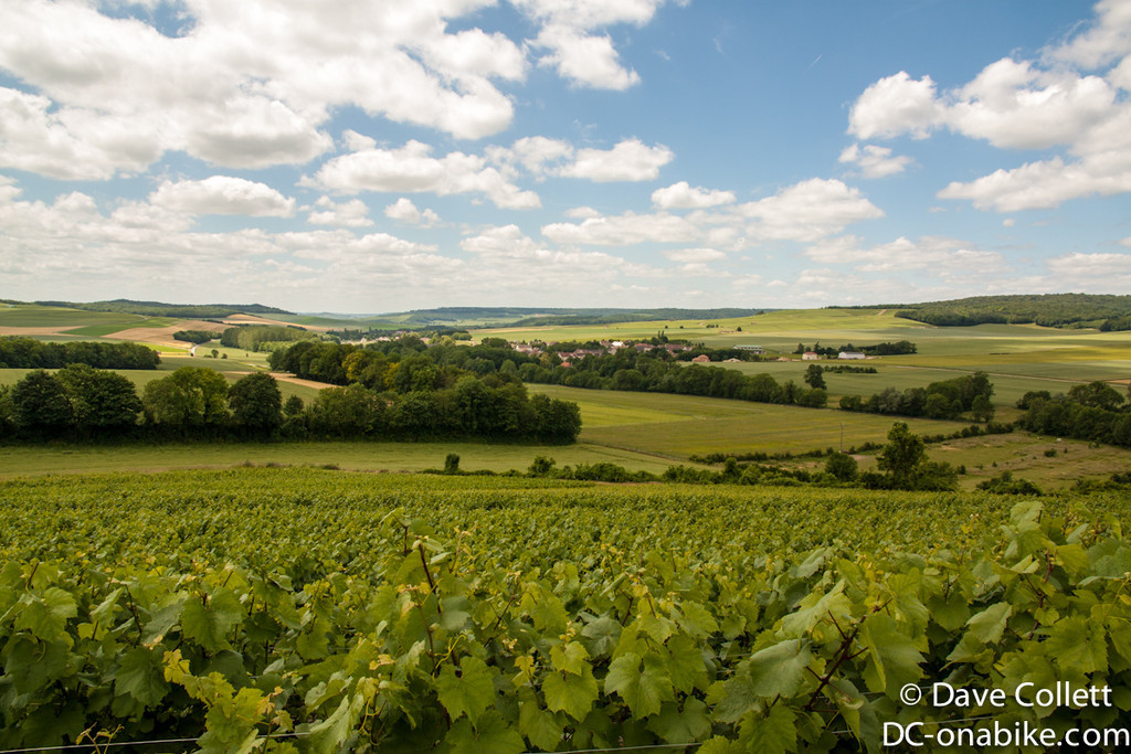 Champagne vines and valleys