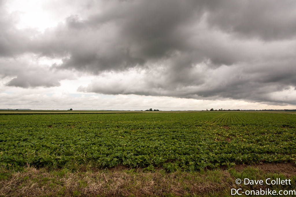 Rain-clouds looming