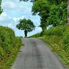 Road to Mont Saint-Michel