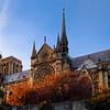 Paris France, Notre Dame Cathedral