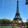 Paris France, Eiffel Tower with Spring Blooms