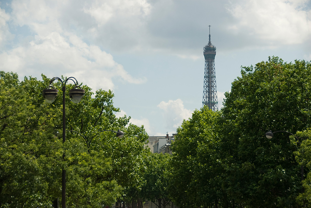 Tower rising above canopy in Paris, France