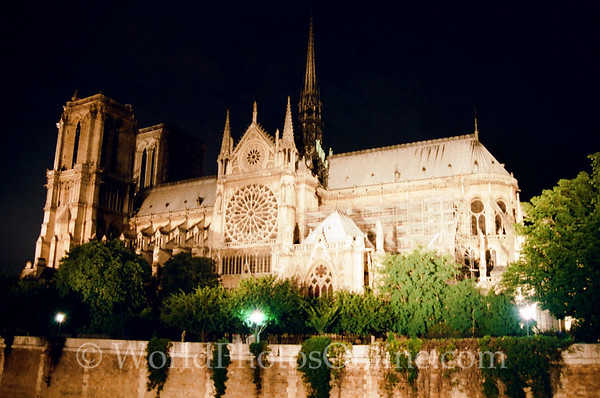 Paris - Cathedral of Notre Dame at night