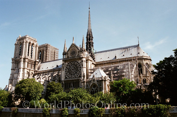 Paris - Cathedral of Notre Dame 3