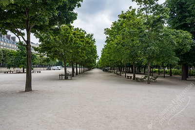 Paris - Jardin de Tuileries