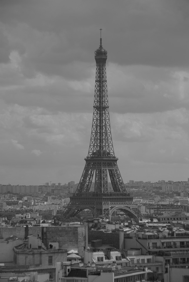 Profile of the Eiffel Tower in B&W - Paris, France
