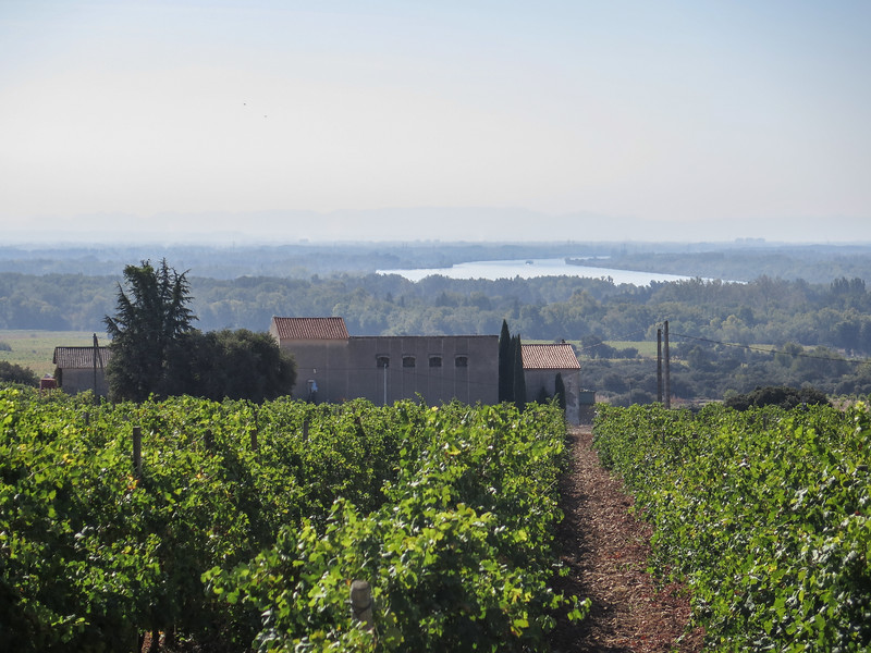 """Chateau de la Gardine"" Winery"