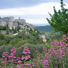 It is Provence in May...
