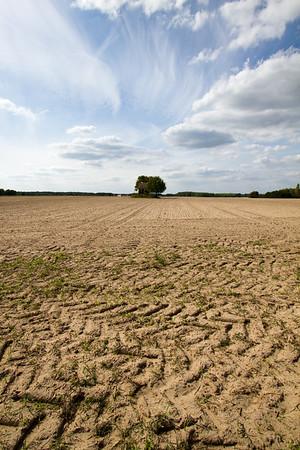 Soil Patterns